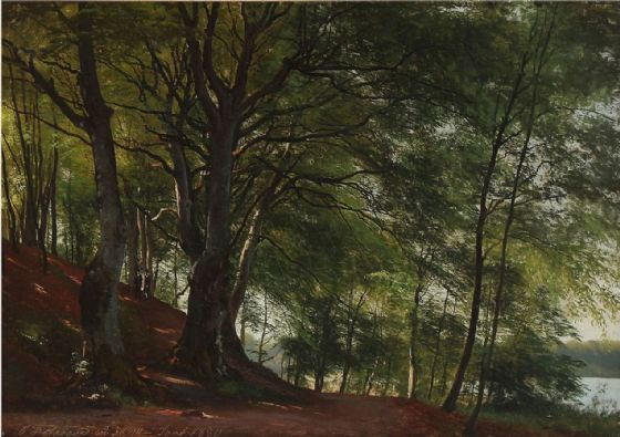 Aagaard, Carl Frederic: Forest Scene from Sorø, Denmark. Landscape Fine Art Print/Poster. Sizes: A4/A3/A2/A1 (003161)